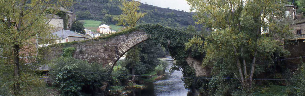Restoration of the Medieval Bridge Navia de Suarna